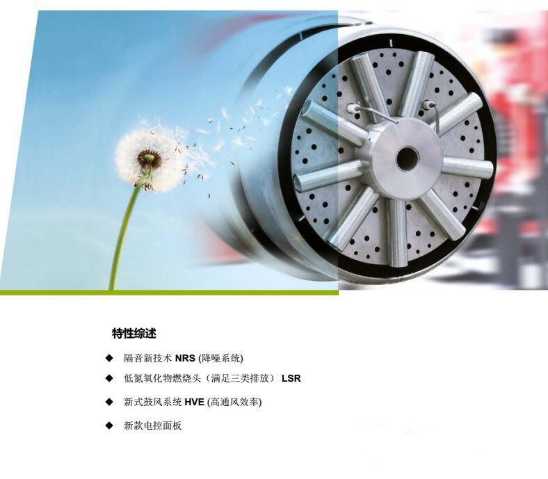 型式试验报告 ---- 低氮80mg